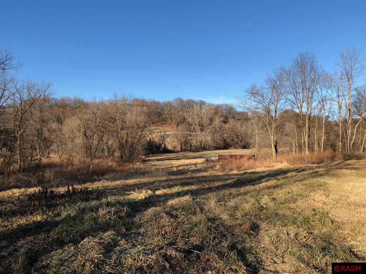 Nature at its finest with abundant wildlife - a hunters paradise!  21.65 acres located on the Le Sueur River.  Zoned agricultural and can have livestock.  Great location only 10 minutes from Mankato.