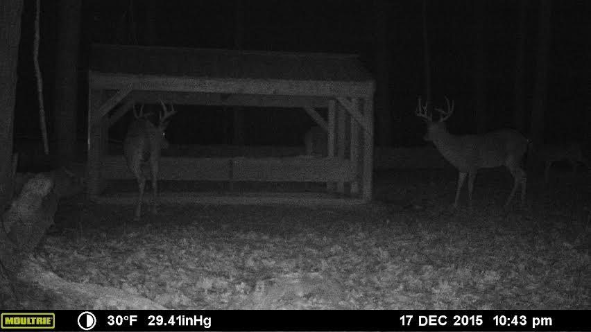 603 Deer Run Road