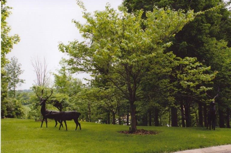 143 Sequoyah Trail