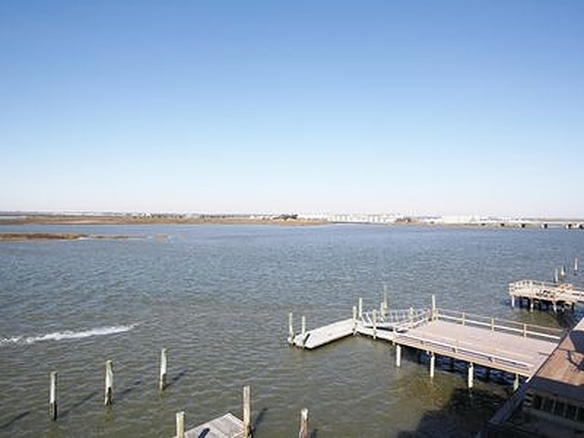 10009 Sunset Drive, Unit Numbers 5, Stone Harbor,NJ - Picture 10