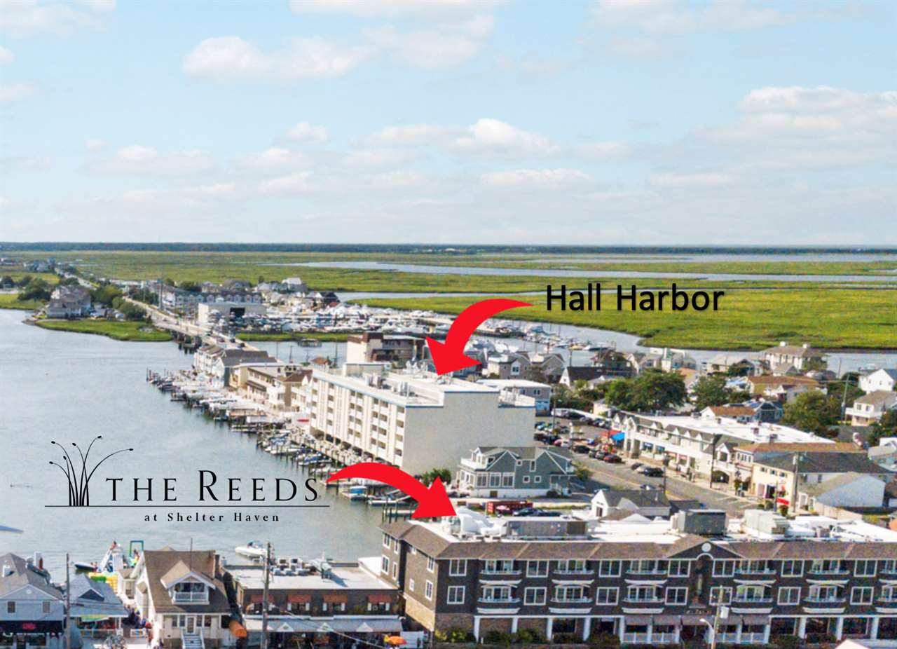 351 96th Street, Unit Numbers 215, Stone Harbor,NJ - Picture 19