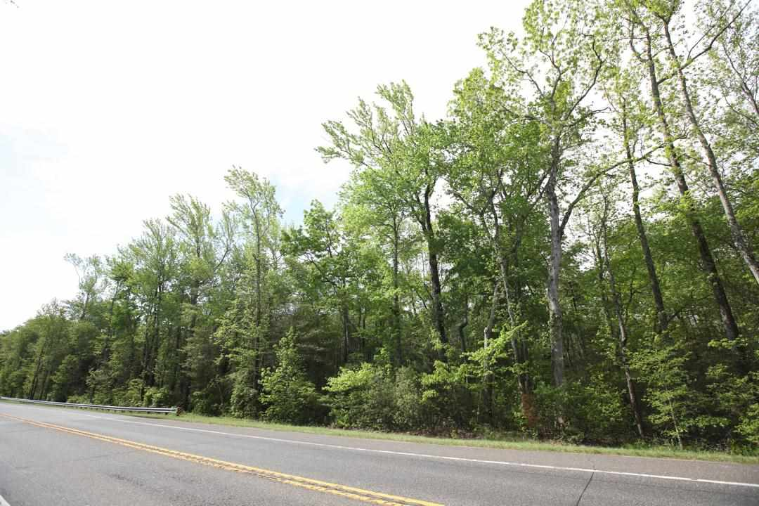 1595 Route 47  - Picture 1