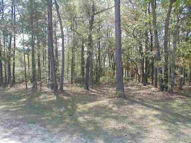 Lot in Greenwood Estates-mobile homes/manufactured allowed! Owner financing available. Country living with easy access to the city.