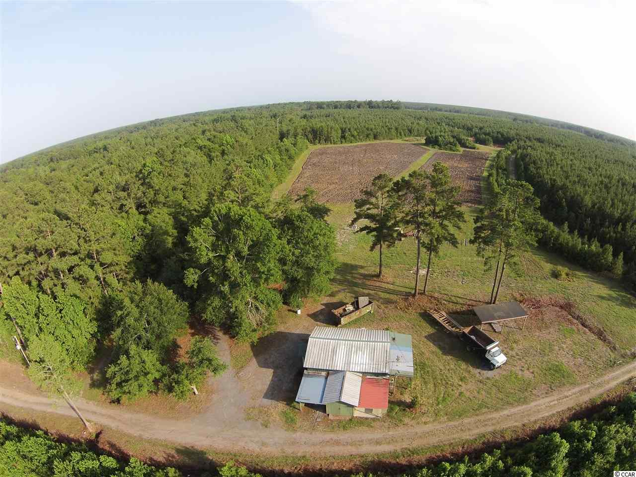 87.79 Acres (3 Adjoining Lots) off Parview Ave off Jackson Village Road of Hwy 701 N. Acreage includes Cabin, Shed, Metal Building, Pond and an abundance of Planted Pines. Perfect Recreational Tract inside of Georgetown County.
