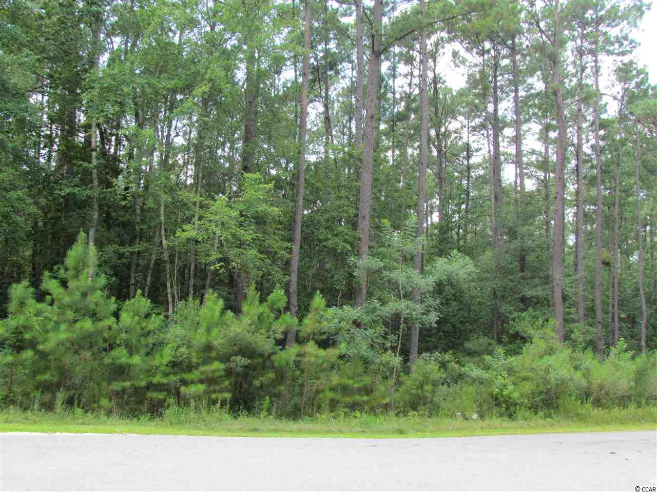 Great building lot at a great price in Wedgefield Plantation this lot  backs up to Mansfield Plantation