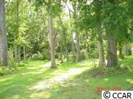 VERY NICE LOT WITH ESTABLISHED HARD WOOD TREES READY TO BUILD YOUR DREAM HOME.  IN VERY DESIRABLE LOCATION AND PRICED TO SELL.  CLOSE TO ALL THE MYRTLE BEACH HAS TO OFFER IN SURFSIDE AREA.  A MUST SEE IF LOOKING FOR A RESIDENTIAL LOT. NO TIME-FRAME TO BUILD AND OWNER MAY CONSIDER BUILDING TO SUIT OR CHOOSE YOUR OWN BUILDER.