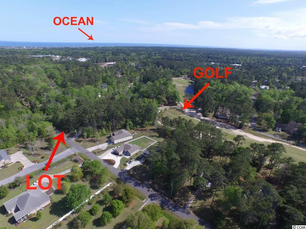 Beautiful private lot in Hagley Estates within walking distance to the Founders Golf club. Not only is golf just a short golf cart ride away but residents of this neighborhood also receive the perks of close boat landing access. This big corner lot has huge potential. There is also a natural stream that flows through the property. Would be a perfect lot for a Charleston style house.  Driving directions- Heading south on 17 take a right onto Beaumont Dr (across from Pawleys Crab & Seafood Shack & in front of the Ford Dealership). Then take a left onto Hammock Ln. The lot is on down to your left. Be looking for Pipedown Way...