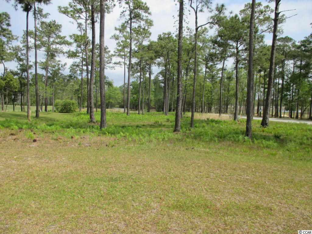 Surfside Realty Company - MLS Number: 1608807