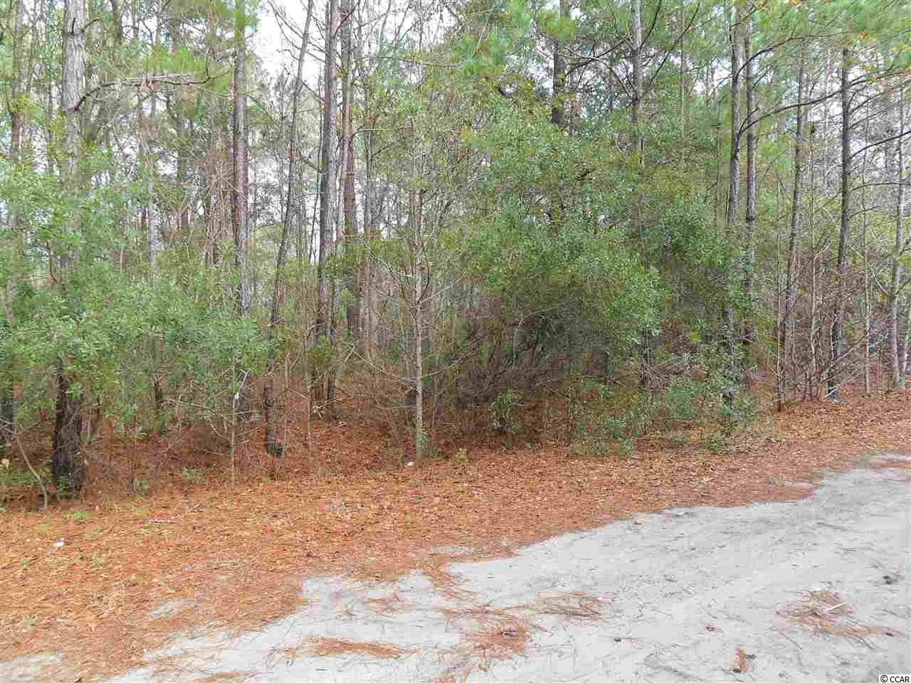 THIS IS LOT #1, WHICH IS ONE OF THREE LOTS IN A LARGER PARCEL, THAT ARE ALL FOR SALE. THE LOT IS NON-BUILDABLE UNTIL CONDITIONS OF THE GEORGETOWN COUNTY WATER AND SEWER DISTRICT EXTENSION POLICY ARE MET. TAP-IN-FEES MUST BE PAID BY THE PURCHASER. Square footage/acreage is approximate and not guaranteed. Buyer is responsible for verification.