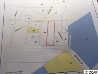 THIS IS A SMALL SLICE OF WELL SOUGHT AFTER PAWLEYS ISLAND LAND.  THE LOT IS EXTRINSIC AND EXPANSIVE IN VALUE. THIS LOT HAS BUDDING POTENTIAL TO A CREATIVE PERSON WHO LIKES A CHALLENGE.  IT IS CLEARED AND READY FOR YOUR HOME. IT HAS A SANTEE COPER POWER LINE EASEMENT THAT RUNS THROUGH THE BACK END OF THE PROPERTY.  THE LOT IS LOCATED ON A NEARBY CURVE NEAR THE PUBLIX  SHOPPING CENTER AND OCEAN HWY.