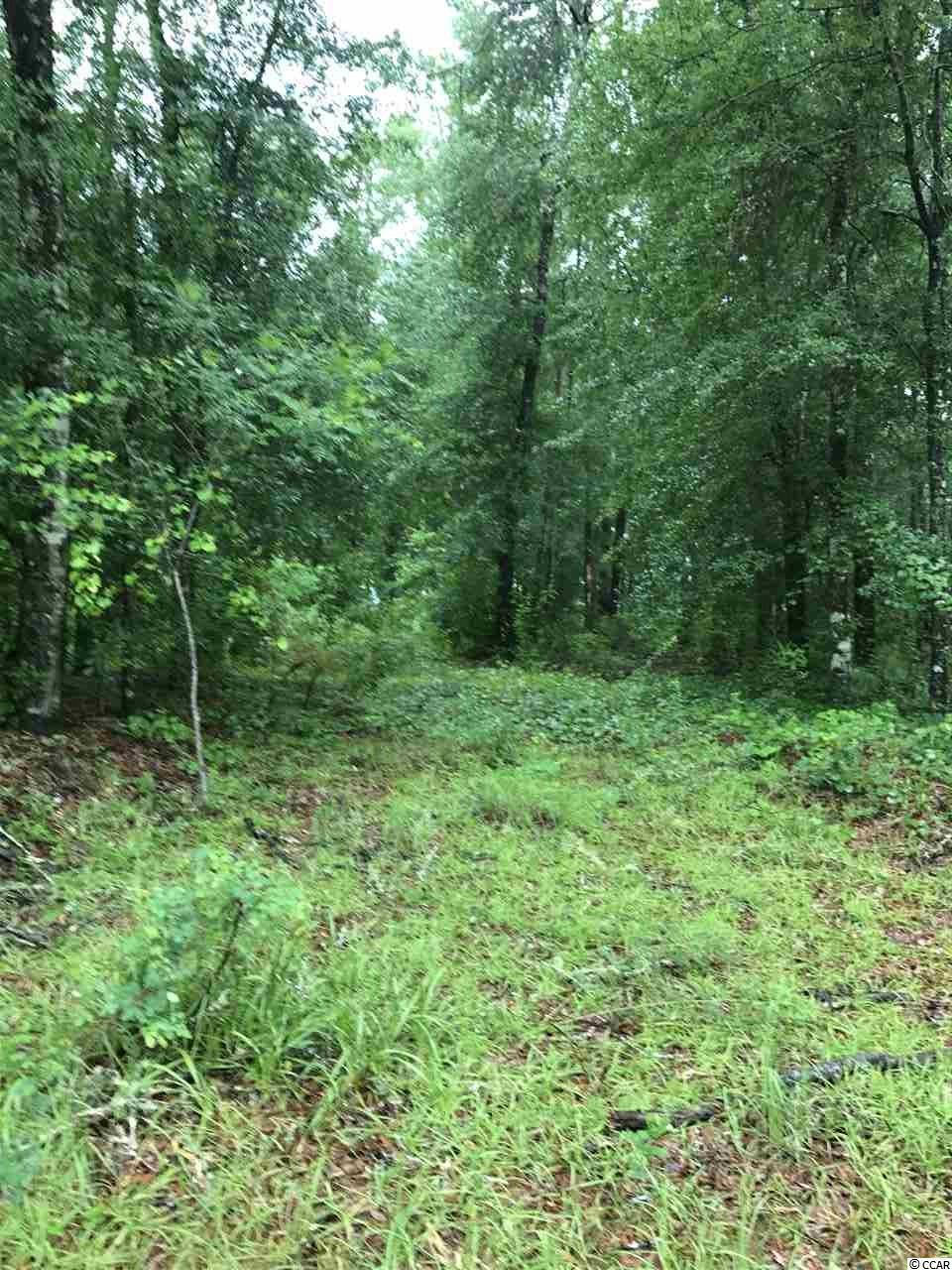 nice building lot in Black River Retreat across the street from the river...a short distance from the public boat launch...15 minutes from Georgetown  Seller will cover the cost of  a Perk Test with an accepted offer.