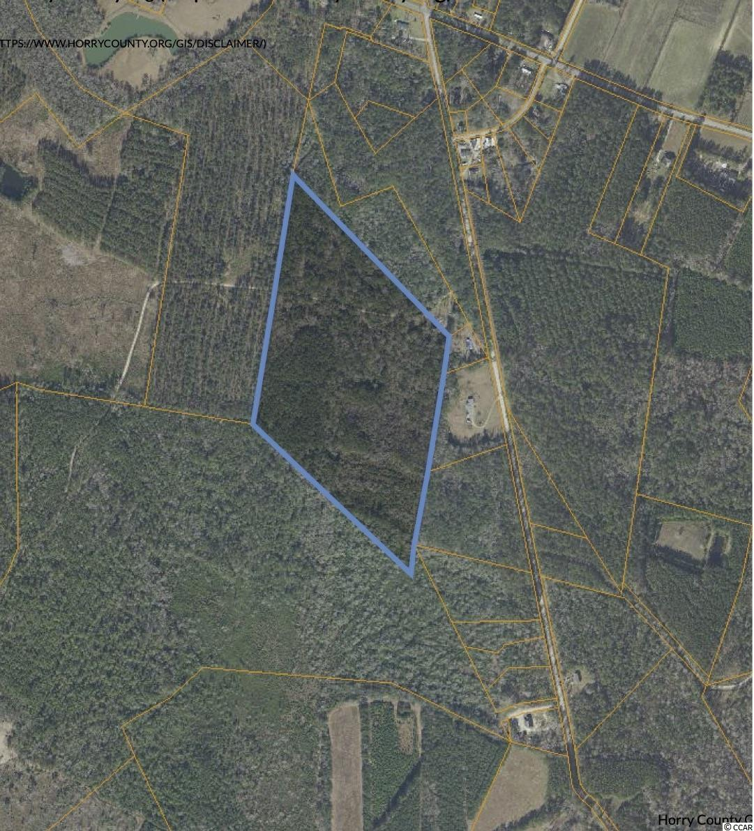 39.25 acres of natural paradise. Only 30 minutes from the beach, 15 minutes to Conway. No HOA just an amazing, private retreat. Zoned FA. All listing information is deemed reliable, but it is the buyers' responsibility to verify.