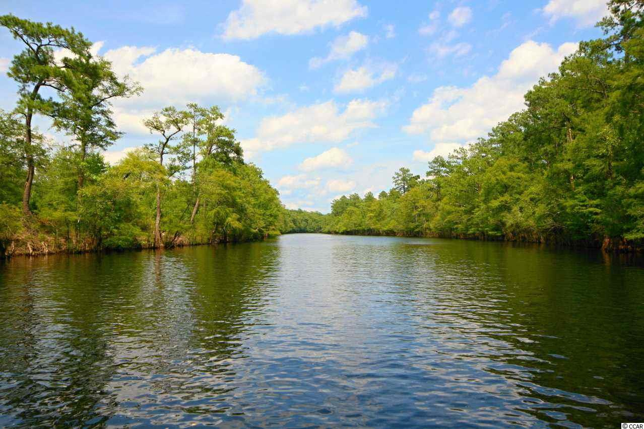 *Private Dock Permits On File* Rare Opportunity-Beautiful riverfront development consisting of only 16 lots directly on the Waccamaw River.  This private riverfront community affords you the ability to boat down the scenic Waccamaw River to downtown Conway's River Walk and out to the Intracoastal Waterway. The community boat ramp and dock are complete.  Large cleared lots with building pads in place.  With this property you get all of the benefits of scenic riverfront living while still being only 15 minutes to the beach!  No time frame to build!  Secure your dream homesite today before it is to late.