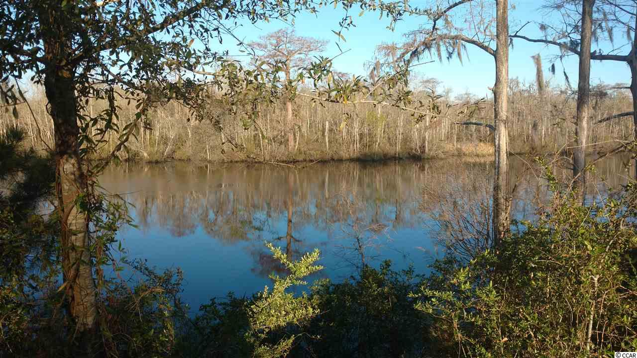 Looking to build a home on the Historic Black River then take a look at this lot that has 100 ft of river frontage with high bluff over looking the river. This lot was one of the few that did not flood during the epic storm!!!!