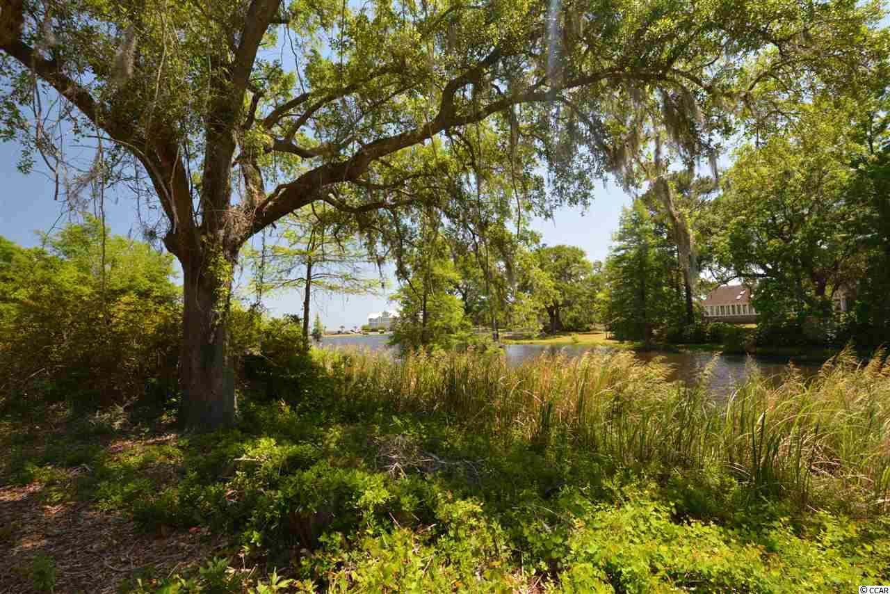 Fantastic Lake views from the high lot located on a nice lake that is just across from Winyah Bay. Tranquilty Lane describes this quite peaceful home site perfectly. Beautiful setting for home and perfect for that 2,000 to 6,000 sq. ft. home surrounded by hardwoods and beautiful water and wooded views. Minutes drive to Georgetown and 50 minutes to Charleston. Just across the lake from Historic Belle Isle. Build on your own timeframe and build what YOU want. No HOA and no restrictions so perfect for boaters or anyone who needs a little space. Some of the pictures are very old , 25 plus years ago when lot was cleared.