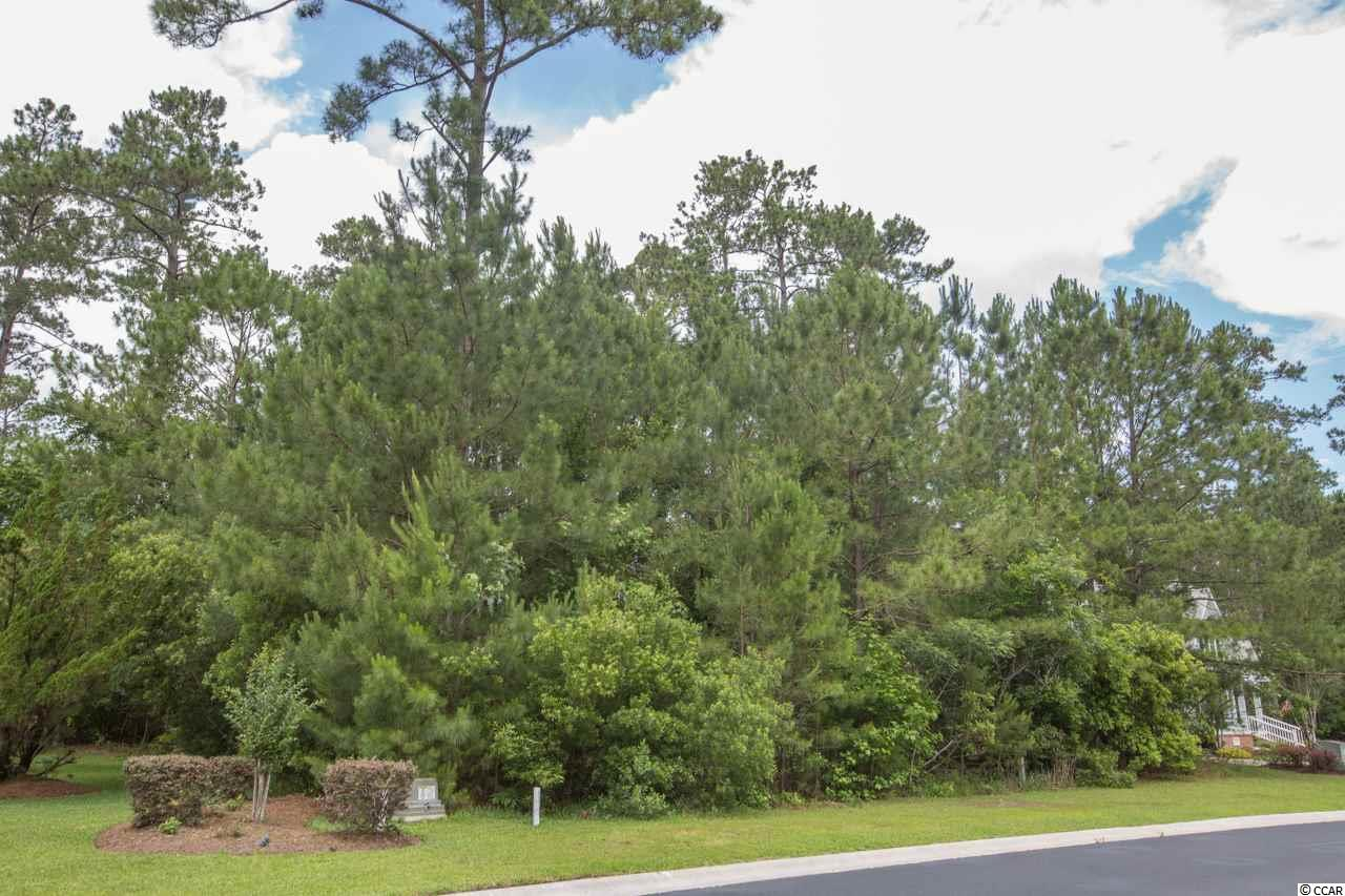 Great opportunity to own a home site in the custom neighborhood of Bellwood Landing. One of the Prince Creek gated communities that boast some of the best amenities in our area. Residents have access to a 40 acre amenity center with large pool, kiddie pool, playground are, tennis courts, walking trails and outdoor covered pavilion complete with a huge fireplace, rocking chairs and picnic tables! Short drive to beaches, fishing piers, restaurants, the Murrells Inlet Marshwalk, Brookgreen Gardens, shopping and championship golf courses. Buy now, build anytime! Measurements are approximate and not guaranteed. Buyer is responsible for verification.