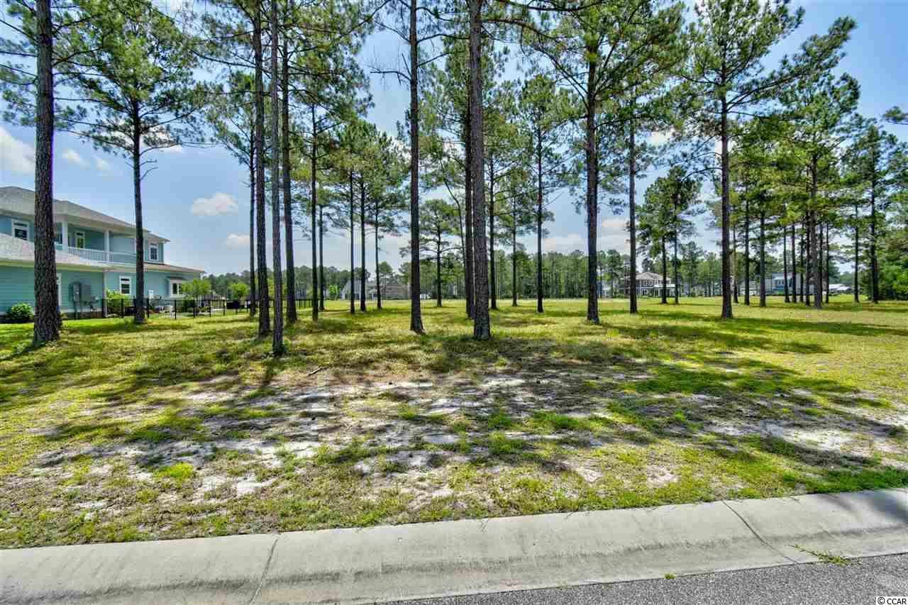 Must see this great lake lot in the Gated community Waterbridge-Carolina Forest!  Come build your dream home w/ no time frame to build.  On top of this fantastic lot, Waterbridge's awesome amenities include a huge pool area, tennis, fitness center, volleyball & basketball courts, a boat launch & pier, fire pit, swim-up refreshments bar and is conveniently located close to the award winning school system and just a short drive to the hospital, MB Airport, shopping, dining, entertainment, golf, area attractions, the beautiful Atlantic Ocean w/ 60 miles of white sandy beaches and all the beach has to offer yet is out of the busy hustle & bustle of the Grand Strand!  Don't miss ~ come live the dream!