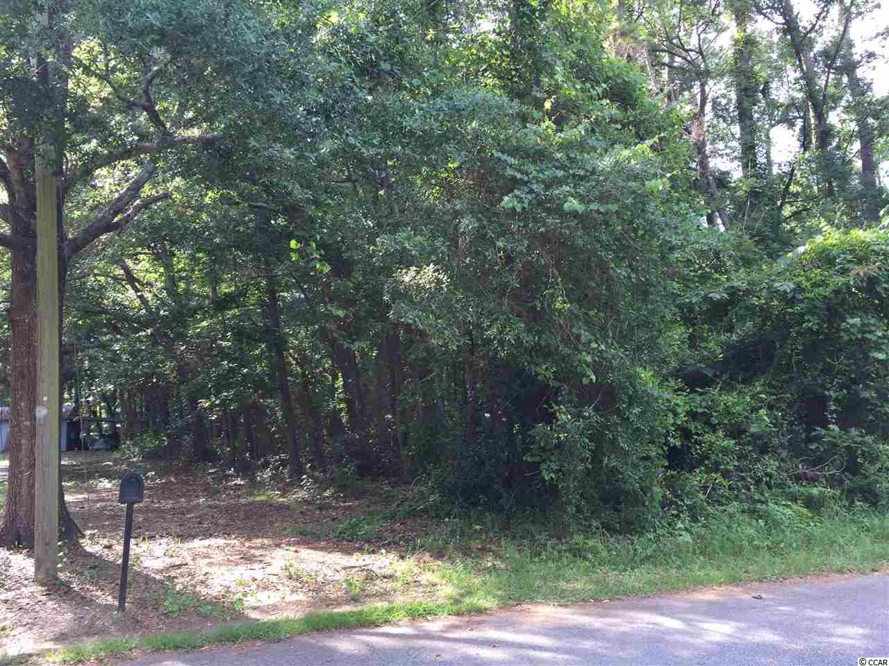 Huge lot 100 X 190 This is the best value east of Hwy 17 In Pawley's Island / Litchfield.  Drive to the lot and view the possibilities. Build your dream home or hold it until later. This is and investment you cant afford to miss.