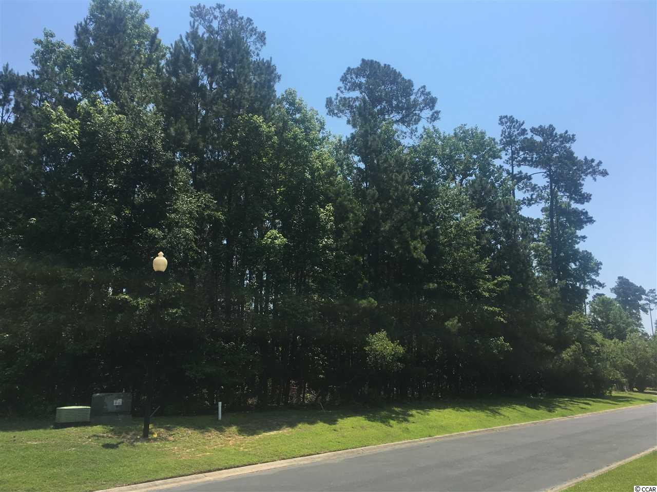 Nice wooded lot in the upscale Creek Harbour neighborhood. This lot has a large buildable area with lots of privacy including a manicured common area next door that will never be developed. Amenities in the neighborhood include a gated entrance with a pool and a clubhouse as well as a boat parking area and a private boat launch.