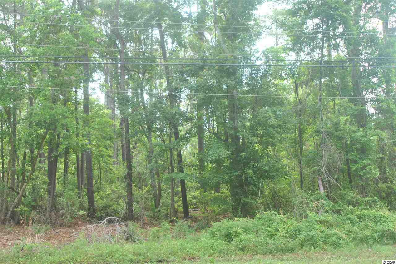 Wooded building lot in Belle Park, a traditional residential neighborhood in North Myrtle Beach. Ready to go. Great price on a great homesite