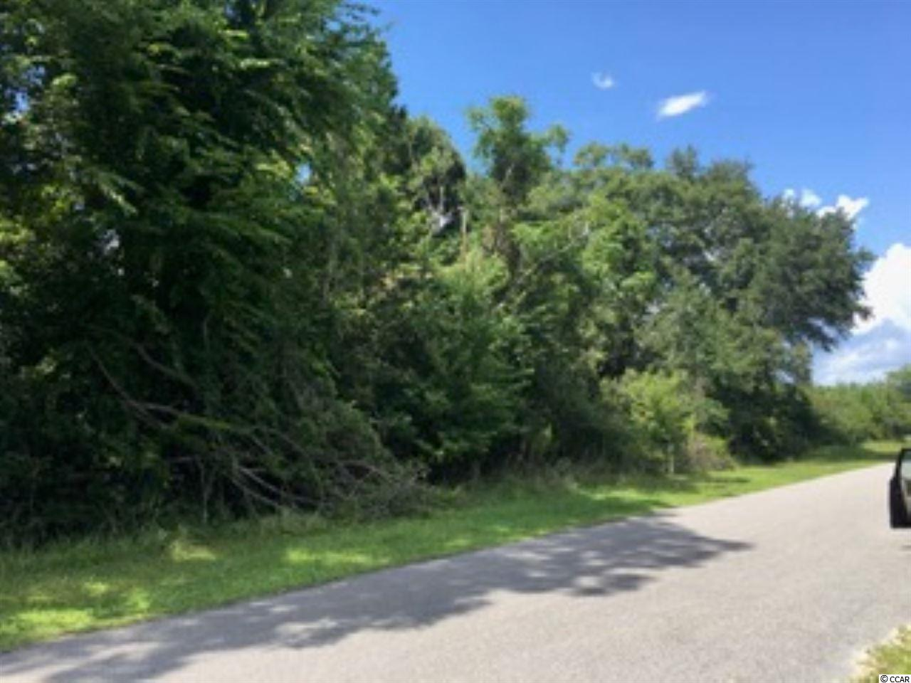 .71 acre vacant lot. Great deal on a lot to build your dream home. No time frame to build. Schedule your showing today.