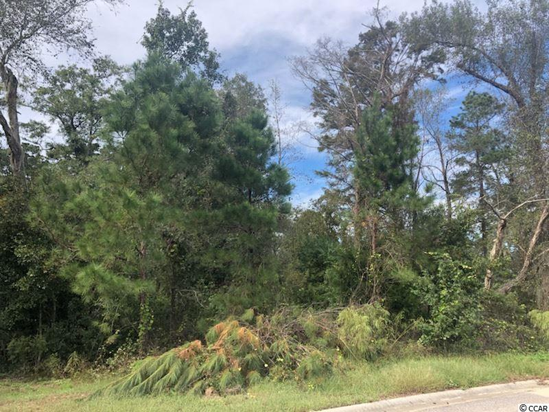Great value for vacant lot in desirable River's Edge Plantation. Walking distance to Community Boat Dock and Neighborhood pool!  Don't Delay!  Sold As Is.