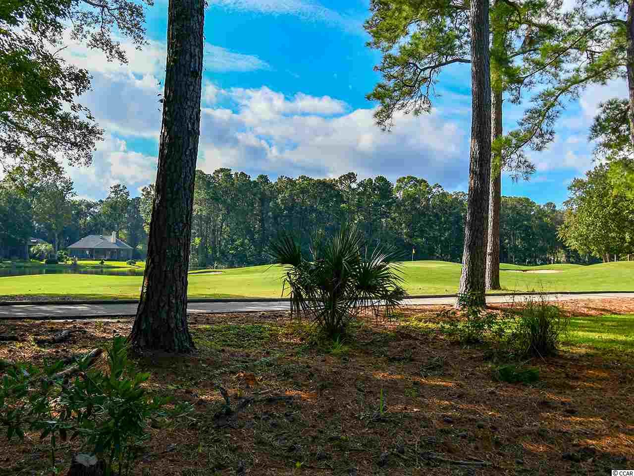 Great patio lot with golf and water views conveniently located for easy in and out in the much desired community of Pawleys Plantation.  Jack Nicklaus was recently here to help celebrate the 30 year anniversary of his well designed golf course.    Come build your perfect home overlooking the third green, or add it to the adjacent home that is currently for sale at 154 Turtle Creek(same owner)