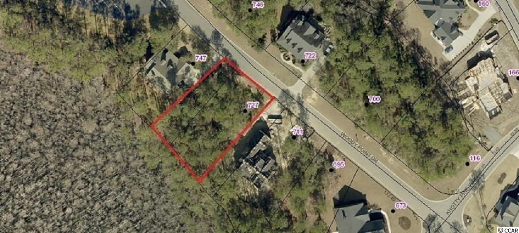 Beautiful wooded lot in the much desired Collins Creek Landing section of Murrells Inlet. Enjoy all of the amenities that this wonderful community has to offer including clubhouse facilities, pool, playground, basketball court, soccer field, batting cage, nature walk, boat ramp with day dock, and boat parking. Located within close proximity to area beaches, Brookgreen Gardens, Wacca Wache Marina, excellent dining, and all that Murrells Inlet has to offer! Build within your own time frame and with the builder of your choice.