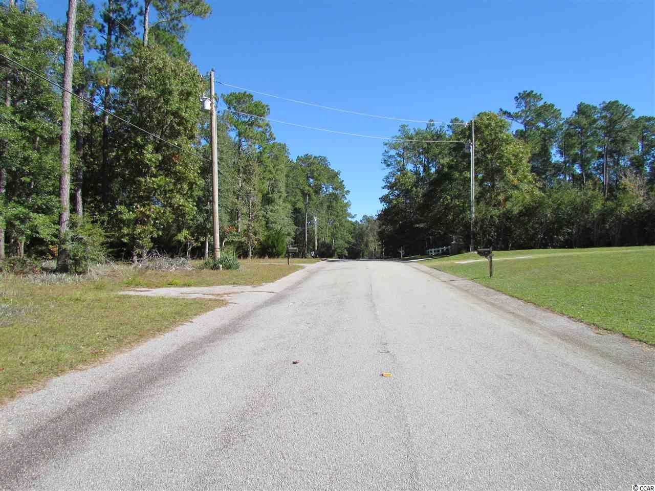 This mostly cleared lot sits on a high bluff overlooking the beautiful Black River.  Spend your days swimming, boating and fishing and your evenings watching the sun go down.  This lot sits on an established street and offers a quiet setting.  Bulk head needs repaired.  There is a dock and covered area at river level but no access due to bulk head issue.