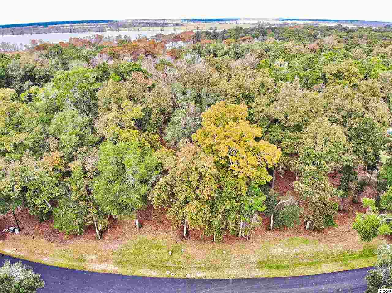 Build your Dream Home in One of the Most Exclusive Gated Neighborhoods in Pawleys Island, Allston Bluffs.  This Beautiful Homesite is Over 1.3 Acres and Backs to Common Area. Each of the 20 Homesites in this Small neighborhood has a Dedicated Boat Slip in the Community's Private Marina.  The Clubhouse Overlooking the Waccamaw River, with its Wood Burning Fireplace and Full Kitchen, is the Perfect Spot for Entertaining after a Cruise on The River.   The Neighborhood is Lined with Live Oaks Draped in Spanish Moss.  Truly a Southern Showcase.  Located Just a 10 Minute Drive to Georgetown, 25 Miles to Myrtle Beach and under 70 Miles to Charleston make this an Ideal Location.