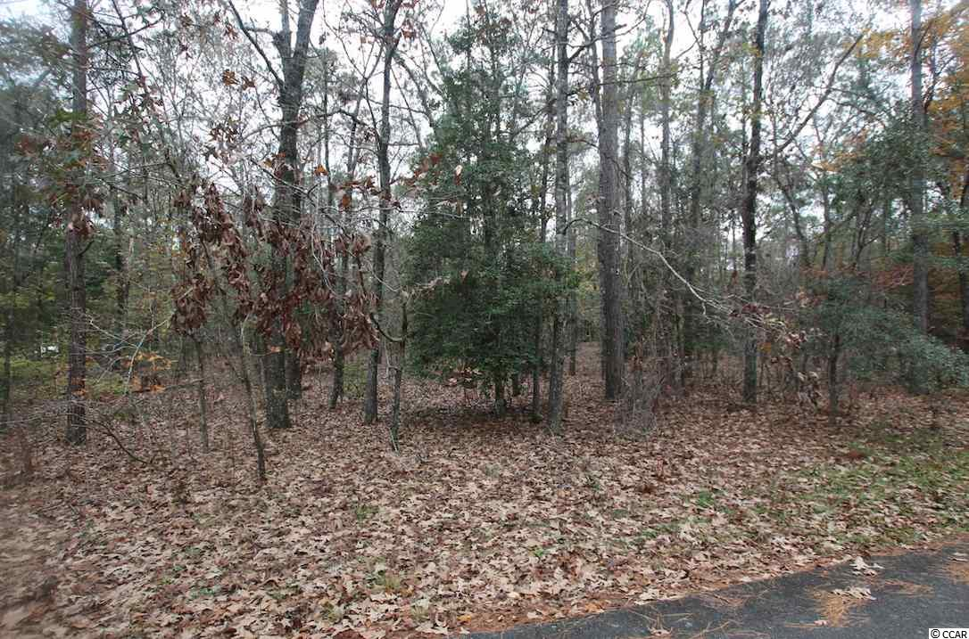 Immediately available, 6.4 acres located in the perfect setting to build your retreat get-a-way. Nestled near the end of the cul-de-sac in Mill Creek Estates. This sprawling tranquil lot gives you the opportunity to build the free flowing open design floor plan with fluid living spaces in a dream home you have always wanted. This lot provides you close proximity to all the attractions and amenities of Myrtle Beach, with fine dining, wonderful world-class entertainment, fishing piers, exciting shopping experiences on the Grand Strand, Conway's antique shops, and the River Walk. Just a short drive to medical centers, doctors' offices, pharmacies, banks, post offices, and grocery stores.