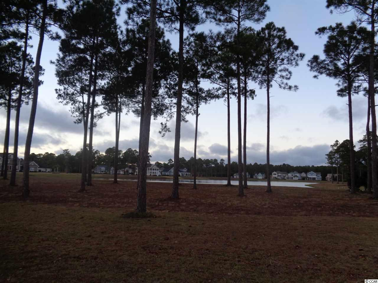 Location! Location! Location! Build your dream home on this waterfront lot in the beautiful gated community of Waterbridge. This lot is located near the amenities center, which offers a pool, fitness center, volleyball court, tennis courts and more! Located in the heart of Carolina Forest near all the great schools, restaurants, Tanger Outlets, Broadway at the Beach and many more attractions. Only a short distance to the beach!