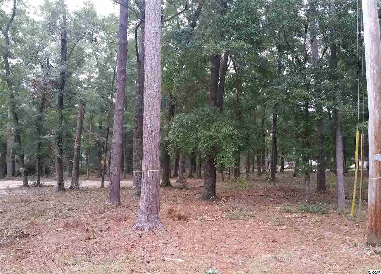 Estate lot for sale near the Waccamaw River in Pawleys Island, South Carolina.  Great lot with minimal site work needed to start construction on your next home.  Lot measure approximately 0.24 acres and is 65' x 129' x 116' x 141'- so there is plenty of room for a larger home or right sized house.   call for more details.