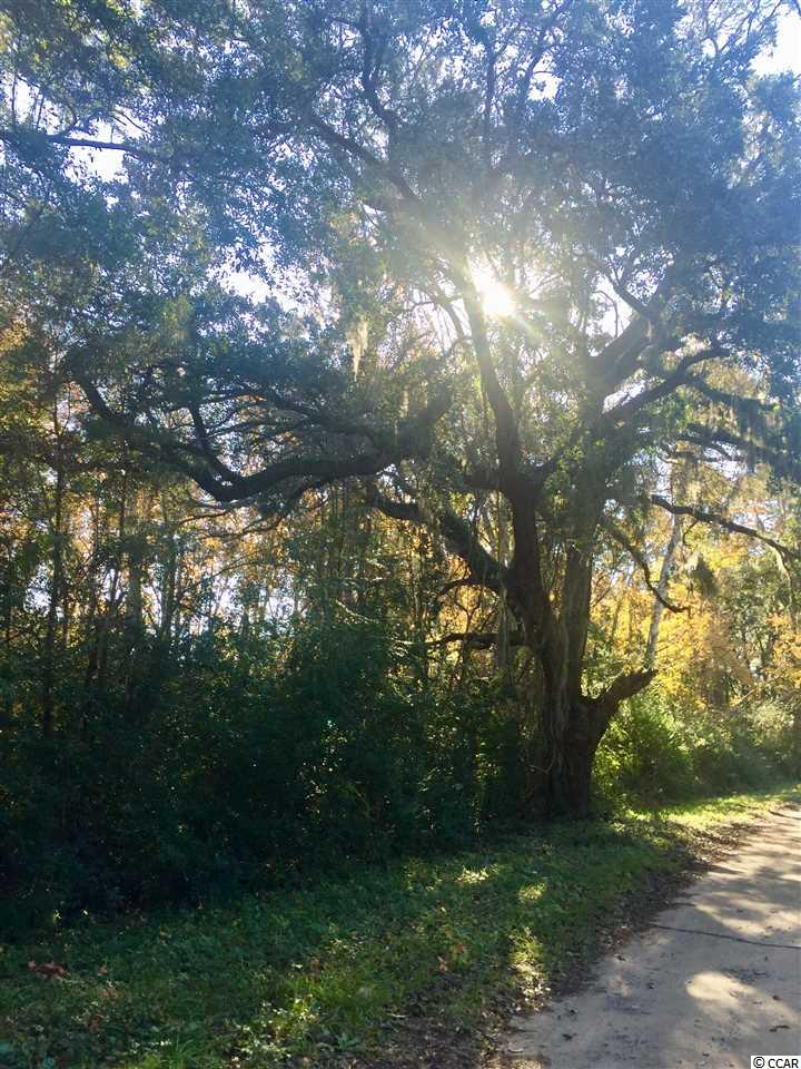 This half acre lot is tucked away, west of US 17 Bypass in Pawleys Island. The property is surrounded by gorgeous live oak trees with proximity to Pawleys and Litchfield beaches.  Come build your dream home!