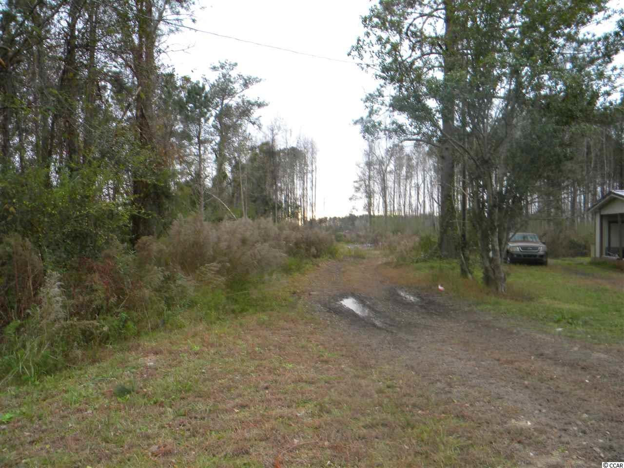28 +/- acres. Vacant land with countless options for use. LFA zoned, high and dry with easy access to Conway and beaches. Flood Zone X. Public water and electricity are on the road. Buyer should verify all information.