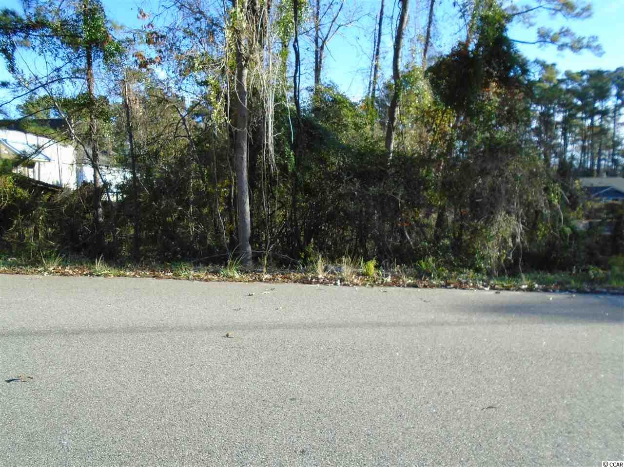 If you are looking for a great price on a Residential Lot in Little River, then you've found it. At this price you better hurry before this one is gone.