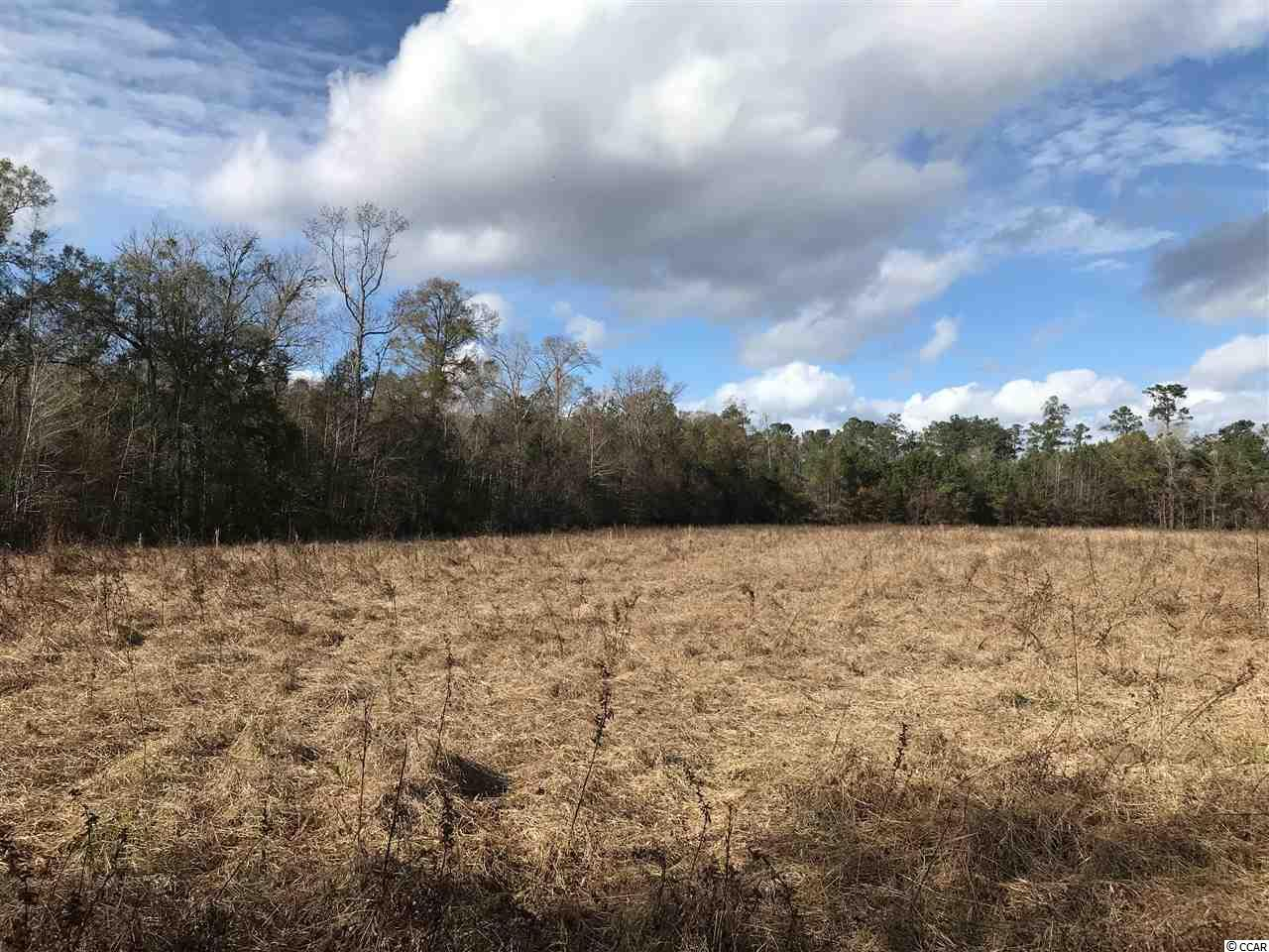 BEAUTIFUL 14.56 ACRES WITH ROAD FRONTAGE ON HWY 66 AND HWY 545- FRONT PART OF PROPERTY IS WOODED AND APPROXIMATELY 9 ACRE FIELD ON BACKSIDE- PUBLIC WATER AVAILABLE- EASY ACCESS TO HWY 22 AND NORTH END OF MYRTLE BEACH.