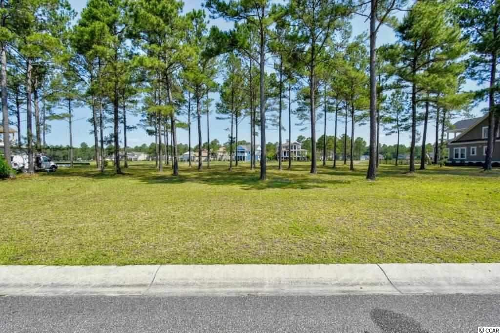 Must see this great, 1/4 acre lake lot in the Gated community Waterbridge-Carolina Forest!  Come build your dream home w/ no time frame to build.  On top of this fantastic lot, Waterbridge's awesome amenities include a huge pool area, tennis, fitness center, volleyball & basketball courts, a boat launch & pier, fire pit, swim-up refreshments bar and is conveniently located close to the award winning school system and just a short drive to the hospital, MB Airport, shopping, dining, entertainment, golf, area attractions, the beautiful Atlantic Ocean w/ 60 miles of white sandy beaches and all the beach has to offer yet is out of the busy hustle & bustle of the Grand Strand!  Don't miss ~ come live the dream!