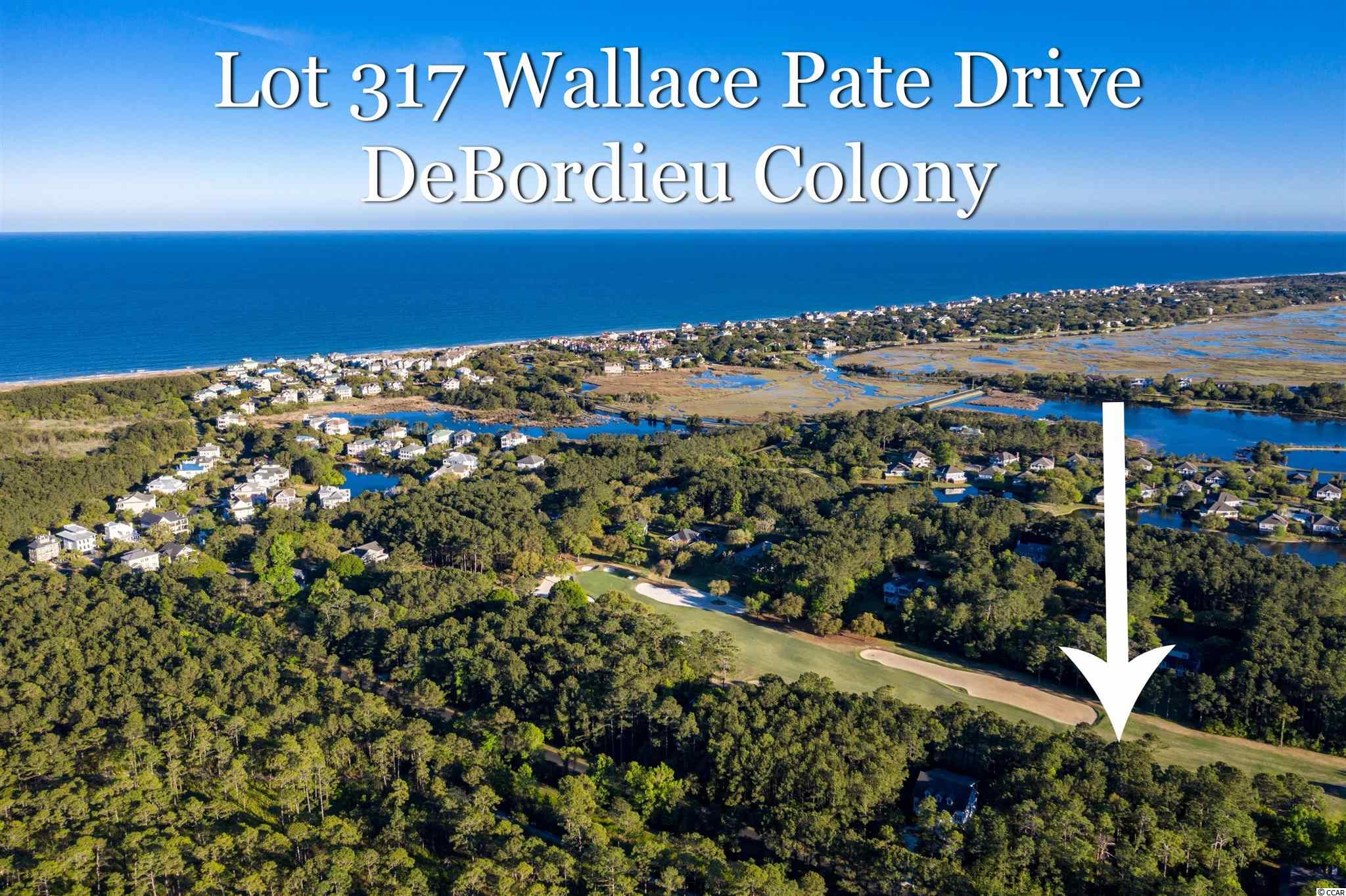 DeBordieu Colony - Take your Golf Cart to the beach! The high elevation and close proximity to the DeBordieu Beach Club make Lot 317 Wallace Pate the perfect lot for you to build your DeBordieu Colony Home! Right around two corners from beach access at the ocean front DeBordieu Beach Club, Lot 317 Wallace Pate offers a wide, golf course fairway view. Because it's not on a tee or green, ARB approval of a pool is likely! Dimensions of this beautifully wooded lot are 100 x 214 x 100 x 210. DeBordieu Colony is an oceanfront community located just south of Pawleys Island, South Carolina featuring private golf and tennis, saltwater creek access to the ocean, a manned security gate, and luxury homes and villas surrounded by thousands of acres of wildlife and nature preserves. There's never been a better time to consider a purchase at DeBordieu Colony. Come see for yourself!