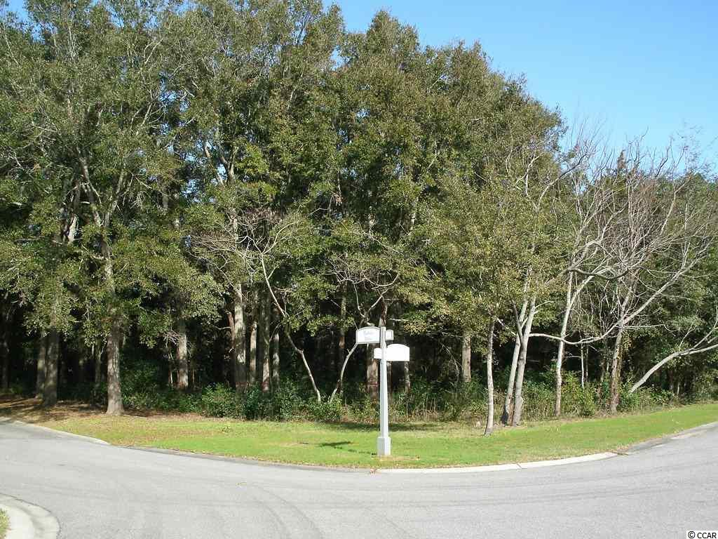 Build your dream home in one of the Lowcountry's most picturesque and elegant settings. This corner site in a secluded part of Pawleys Plantation is surrounded by natural beauty located just across from the tidal creek as well as across from the golf course. Whether you're building a gracious Lowcountry home or a coastal cottage, this lot can accommodate your desires. Pawleys Plantation is a gated community with 24-hour security and an expansive area for biking and walking. Residents can join the country club, which offers access to a Jack Nicklaus Signature golf course, pool, tennis, fitness facility and dining. You'll also be in close proximity to fine restaurants, shopping, historic Pawleys Island and some of the finest beaches and boating waterways on the east coast.