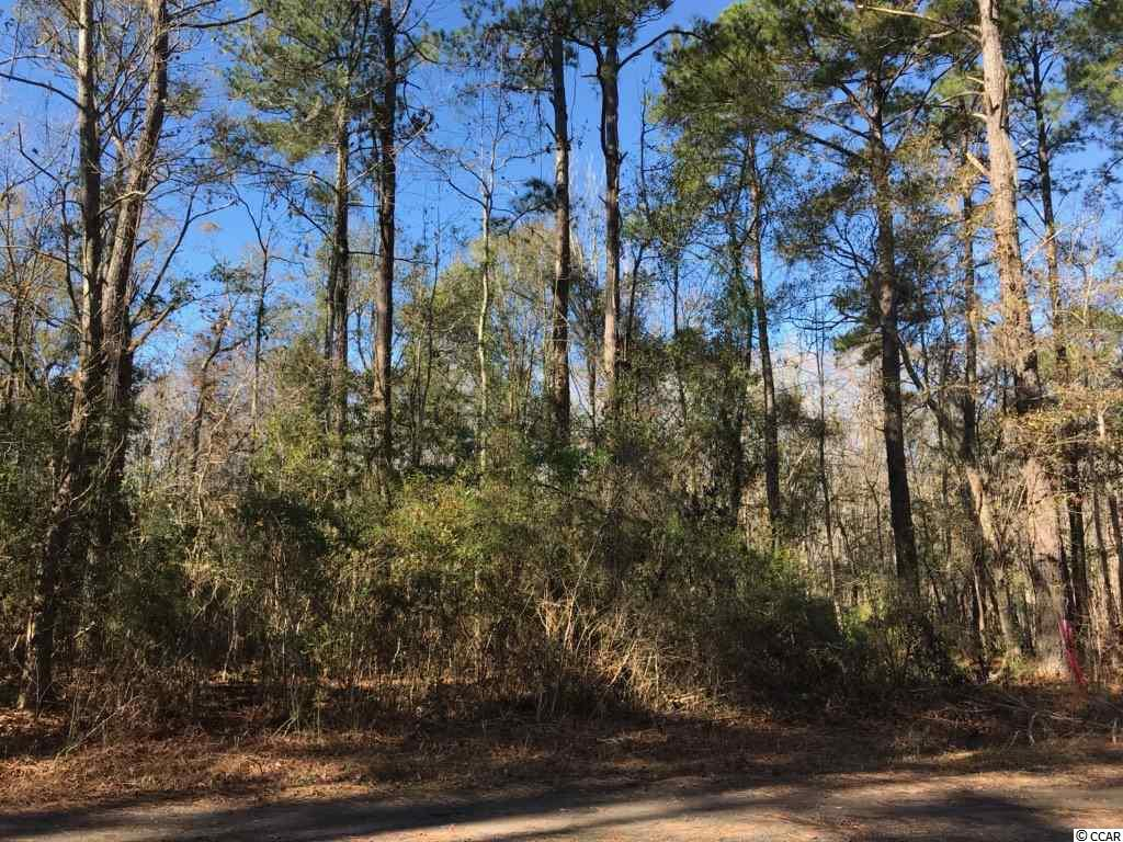Come Build Your Dream Home on this Beautiful Wooded .48 Acres within Minutes to Myrtle Beach/Conway, Myrtle Beach International Airport, Shopping, and Public River Access and Beach Access!