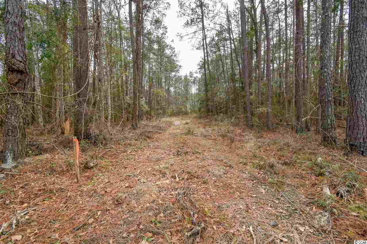 Build Your Dream Home on this Beautiful Wooded  1/2 Acres. Vacant lot, NO HOA fees in a great central location. Road, water / sewer scheduled to be installed within this year! You could start clearing anytime and by the time the house is built the road will have been put down! If you looking for peace and quiet, you'll love this quiet lot on Fern Creek Court. Within Minutes to Myrtle Beach/Conway, Myrtle Beach International Airport, Shopping, and Public River Access and Beach Access! Priced just right!! All measurements and square footage are approximate and not guaranteed. Buyer is responsible for verification.