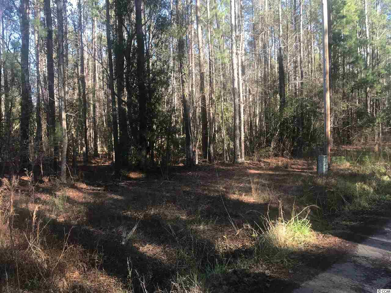 Room to Roam after purchasing this 13 acre of wooded land. This affordable acreage is located just off of Highway 57 in Little River! Plenty of room to build your dream estate with No HOA fees! Multiple uses for this property , which is on both sides of Finnell Rd. Cut the timber and make some cash and start building! Only 10 minutes to the beach! Hurry because this deal won't last long!