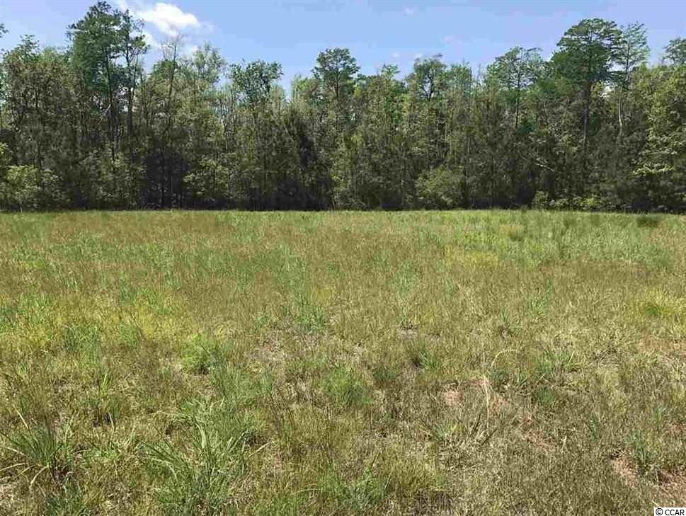 **Lowest Intracoastal Waterway Lot in Cypress River Plantation!!**Huge, One-of-a-kind Intracoastal Waterway Residential Lot located on a Private Island within Cypress River Plantation! Enter through a private gate that takes you to an exclusive island where only 3 build-able lots are located. This lot is 2.93 acres, which gives you plenty of room to build your dream home on! Take the walkway down to the 149' of waterway front, where floating docks await. Cypress River Plantation is a beautiful 500 acre community which consists of custom built homes situated along the Intracoastal Waterway. Enjoy boating through the waterway, golfing, tennis and swimming or just experience nature at it's finest. Top-rated schools, shopping, restaurants nearby and less than 10 miles to the fabulous beaches, and close to all of Myrtle Beach's world class attractions make Cypress River Plantation a great place to call home. Cypress River has tons of amenities for its residents including a large Clubhouse with Pool, Fitness Center, Outdoor and Indoor Spaces, Private Day Docks and Boat Launch. Home sites are over sized and treed, allowing for more space and privacy than found in other communities. A certain laid-back elegance embodies this boat and golf-cart friendly community. Driving in the front entrance past the waterfall-ed rock wall, visitors are greeted by the security officer and then welcomed through the gates.
