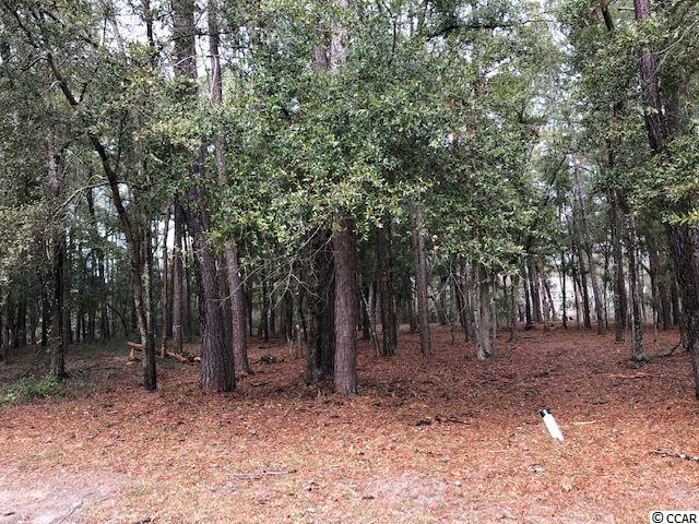 Almost one acre, not many of these in Tidewater. Private wooded double lot.  Build your dream home on this .98 acre lot on a cul-de-sac.  Tidewater offers 24-7 security, tons of amenities, pools, tennis courts, golf, pro-shop and restaurant. Homeowners also have the use of oceanfront beach cabana. Close to restaurant, shows, main street and all the activities out side or Tidewater.