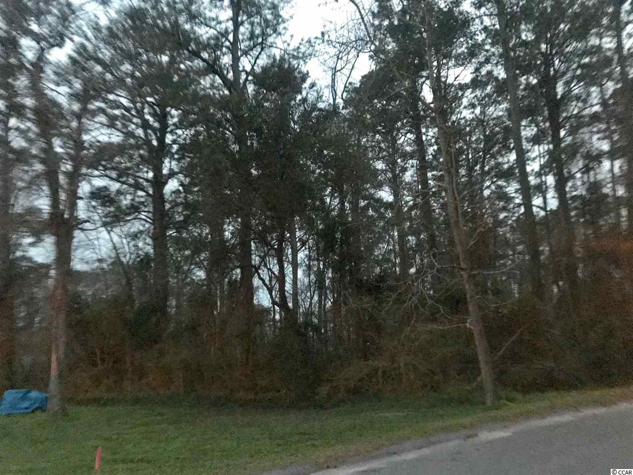 Nice dry Residential Lot with NO HOA Great lot with CFA zoning!! Perfect place to build your home and build a shop in the back yard. Convenient to Restaurants, Shopping and Healthcare Only Parcel B is included.