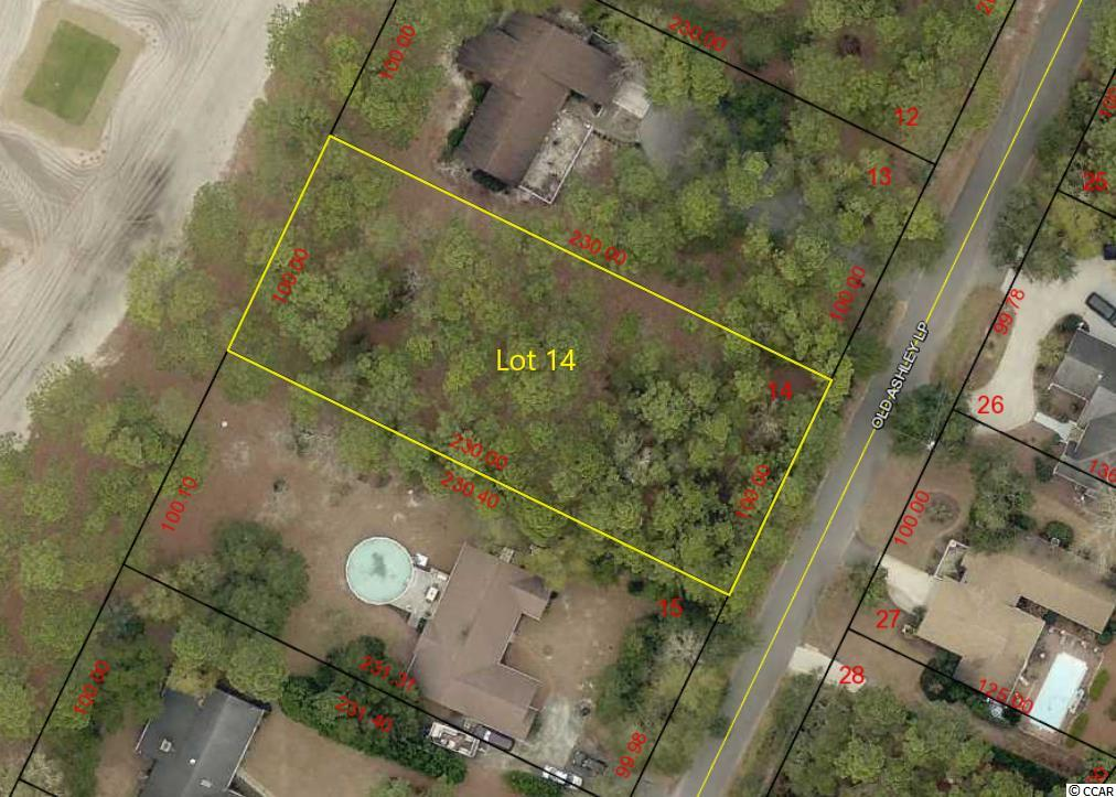 Pawleys Island....Half Acre Residential Lot on Founders Club Golf Course! This property has so much to offer, larger size (100 X 230), Golf Course frontage on 1st Tee at Founders Club, Only 1.5 mile to Public Boat Landing on Waccamaw River and Only 3 Miles to the beautiful Pawleys Island Beaches. High & Dry lot, no wetlands and no flood zone. Park your Boat or your RV right at home!! Hagley Estates of Pawleys Island is a nice community that is built around the Founders Club Golf Course and located between the Waccamaw River and the Pawleys Island Beaches. Hagley Estates offers an easy going lifestyle with no HOA fees and is close to all the natural resources that make living along the South Carolina Coast so enjoyable.