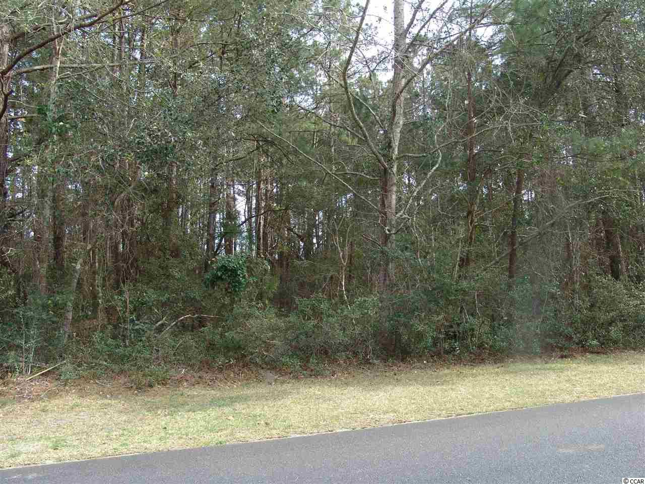 Lot 293 located on Bonneyneck Drive is a large homesite, .64 acre, located on the 10th fairway of the Pete Dye designed golf course at DeBordieu.  A wonderful wooded lot in an ideal location.  The main club house, the tennis/exercise facitliy, the beach are all within a walking, bike, or golf course ride.  The beach club offers casual dining in the bar area and also fine dining for those who prefer the formal setting.  Overlooking the Atlantic, one can enjoy spectacular view of the sunrise and sunset.  The Gazebo offers a relaxing social area and the two pools that members have access provides relaxing poolside areas for the family and friends to enjoy.  The club members aslo have access to the Pavilion where numerous social gathering are planned for residents of DeBordieu.  All the amenities one could want are right here in DeBordieu for one to enjoy.  Golf, tennis, swimming pools, fishing in the North Inlet, social dinning and fine dining all provide an arena for one to enjoy.  If you're looking for a home, consider DeBordieu!!!! You won't be sorry...It's a vacation paradise!!!!