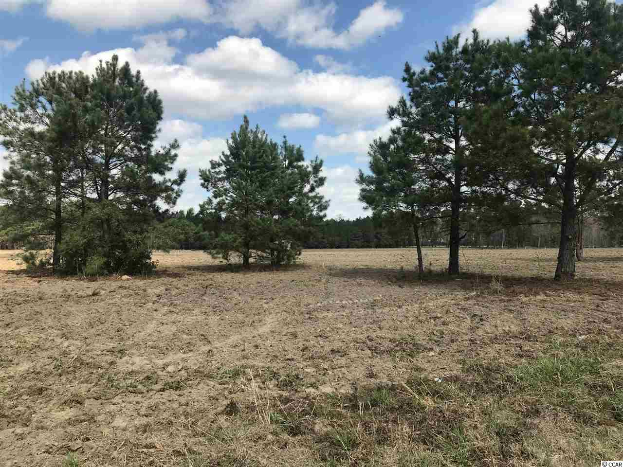 BEAUTIFUL 11 +/- ACRE TRACT- FRONT HALF CLEARED AND BACK SECTION OF PROPERTY IS WOODED- PUBLIC WATER AVAILABLE- RESTRICTED TO SINGLE FAMILY RESIDENTIAL.