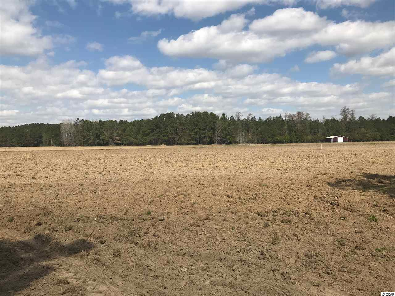 BEAUTIFUL 12 +/- ACRE TRACT- FRONT HALF CLEARED AND BACK SECTION OF PROPERTY IS WOODED- PUBLIC WATER AVAILABLE- RESTRICTED TO SINGLE FAMILY RESIDENTIAL.